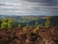 A view of Nidderdale from the start of the walk