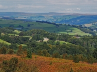 A view of Nidderdale from below Yorke's Folly