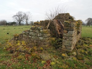 Ruin in a field near Knotty Ash Farm
