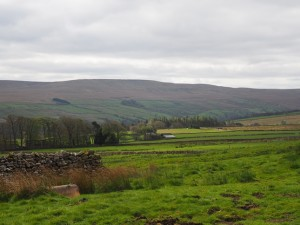 Looking down Coverdale towards Deadman's Hill