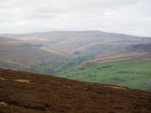 Waldendale and Buckden Pike from Harland Hill
