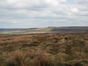 Looking across Fleensop Moor to  Great Roova