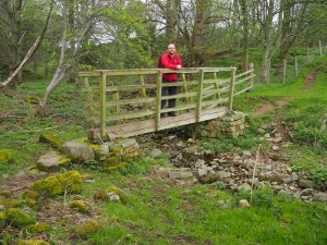 On a footbridge over Howden Gill