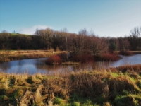 The circular pond alongside the River Aire