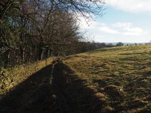 The permissive path shadowing the road
