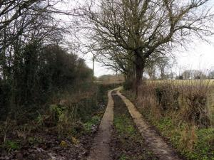 The path called Long Riddings