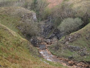 The spectacular looking Penny Farm Gill