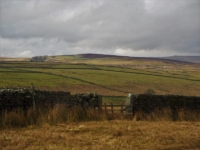 Looking across to New Pasture Edge
