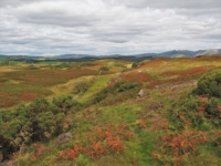 The colourful environs of Wakebarrow Scar