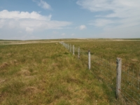 Following the boundary fence north