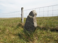 One of a number of boundary stones alongside the fence