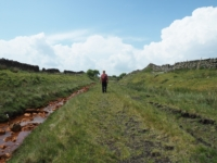 Following the old track bed of the Stainmore railway