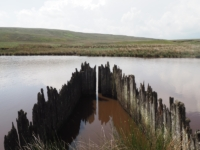 The remains of a wooden structure on Summit Reservoir