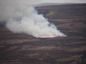 Heather burning on the appropriately named Burnt Moor, Birkdale