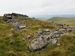 Ruined sheepfold on Fells End