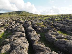Limestone pavement on Lamps Moss