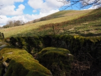 The sixth of Andy Goldsworthy's Sheepfold sculptures that I came across