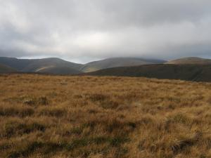 Bush Howe and Felll Head