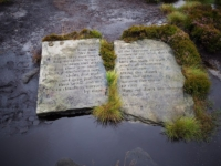 The Puddle Stone