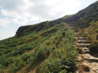 The path climbing up on to Ilkley Crags