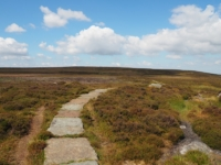 The flagged path heading for the trig point