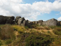 Some outcrops on Burley Moor