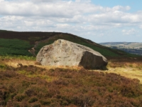 A large solitary rock on the moor