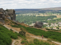 Back at the Cow and Calf