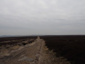 The track crossing Ilton Moor