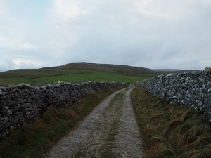 Heading up Fell Lane towards Crina Bottom