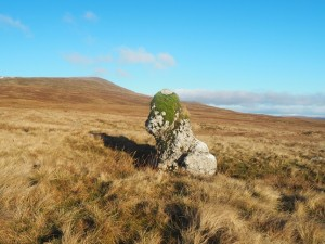 A solitary limestone boulder which looked to me like a dog wearing a green hat
