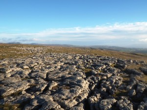 Limestone pavement at Grey Scars
