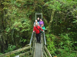 On the bridge above Baxenghyll Gorge