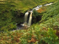 Looking down at another of the lovely falls in Back Gill