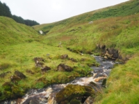The upper reaches of Back Gill thankfully featured less bracken