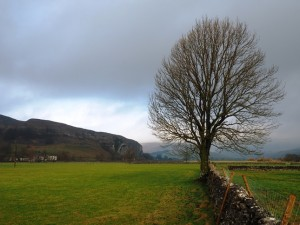 Kilnsey Crag from the lane leading to Conistone Bridge