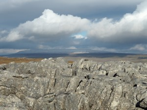 The highest point of Malham Moor looking towards Great Whernside
