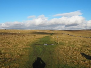 The bridleway heading towards Malham Moor Lane