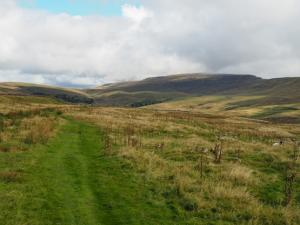 The Turbary Road with Whernside in the distance