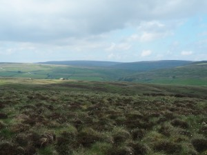 Looking across Keld Side to a distant Nine Standards Rigg