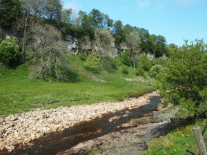 The River Swale below Cotterby Scar