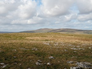 The Middlesmoor Pasture trig point with Buckden Pike in the distance
