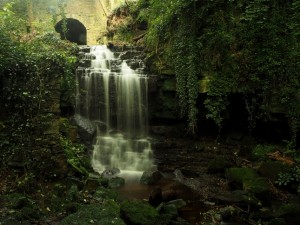 Wensley Falls