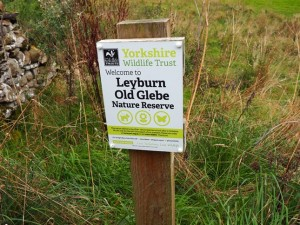 Entering Leyburn Old Glebe Nature Reserve