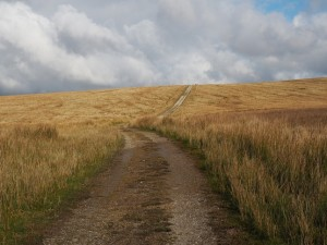 Following the Pennine Way on to Cam End