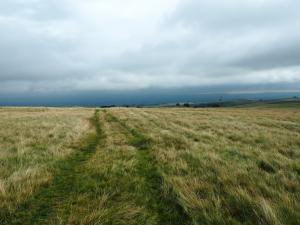 Heading across Little Asby Common