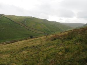 Descending into the Potts Valley