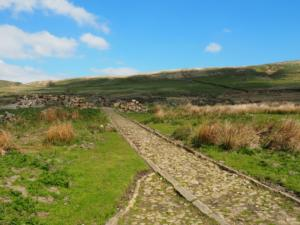 The path that once led to the house at Middle Share, Hodge