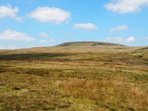 Heading up Lodge Pasture towards Little Whernside