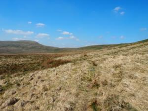 The path as it slants across Angram Pasture towards Nidd Head
